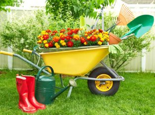 Buy or sell Lawn and Garden products and tools